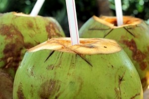coco-coconut-water-cocktail-drink-refreshing